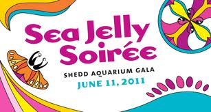 Shedd-Aquarium-Gala_Sip-With_Socialites