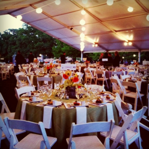 Houston's Evening in the Park Gala