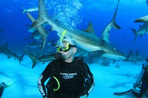 Michael swimming with the sharks.